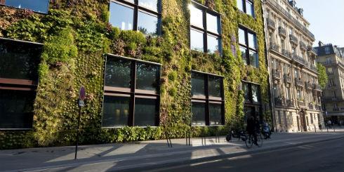 fachadas-verdes-ecologicas-lindas
