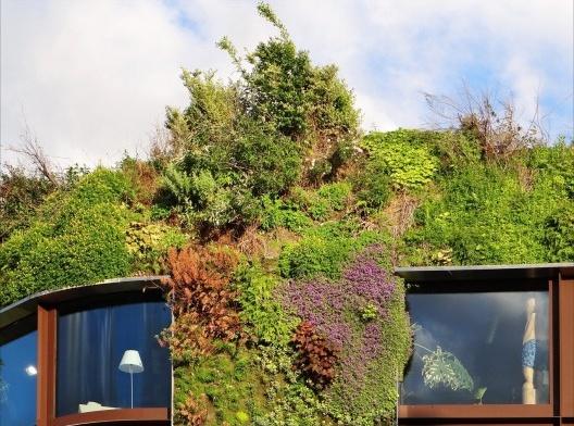fachadas-verdes-ecologicas-paisagismo