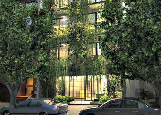 fachadas-verdes-ecologicas-plantas