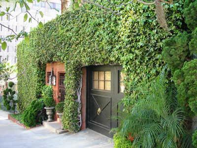 fachadas-verdes-ecologicas-tipos