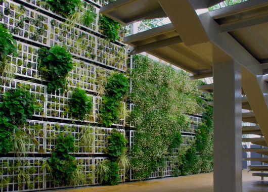 fachadas-verdes-ecologicas