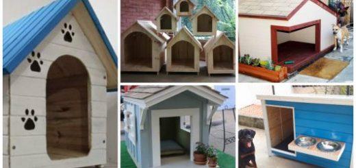 modelos de casinhas