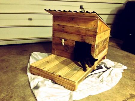 casas-para-gatos-madeira