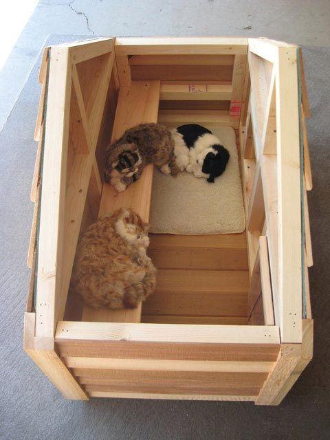 casas-para-gatos-mdf-3