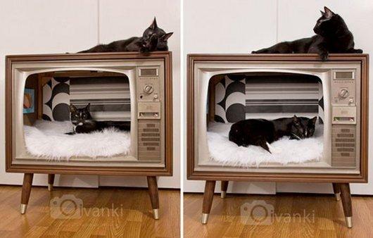 casas-para-gatos-reciclada-3
