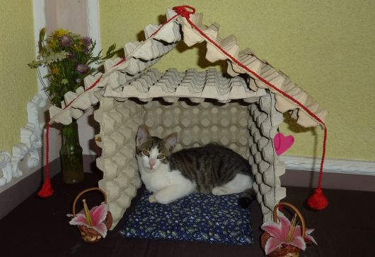 casas-para-gatos-reciclada-5