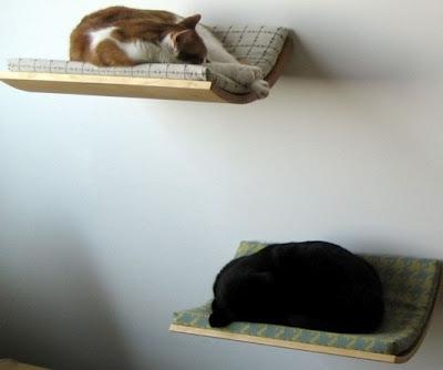 casas-para-gatos-reciclada
