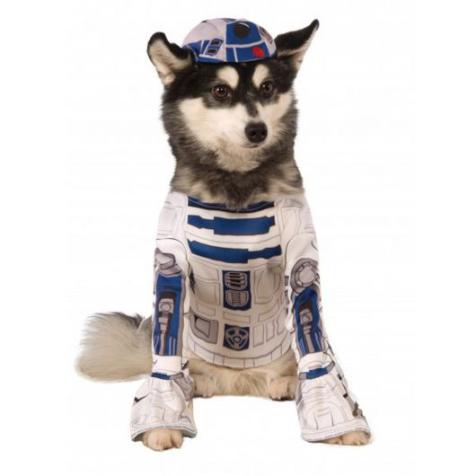fantasias-para-cachorro-star-wars-4