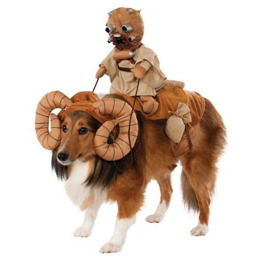 fantasias-para-cachorro-star-wars