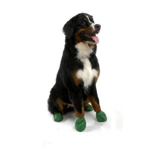 sapatos-para-cachorro-de-bexiga