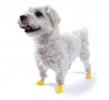 sapatos-para-cachorro-de-silicone-5