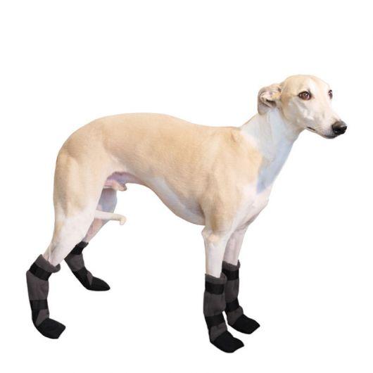 sapatos-para-cachorro-destaque-1