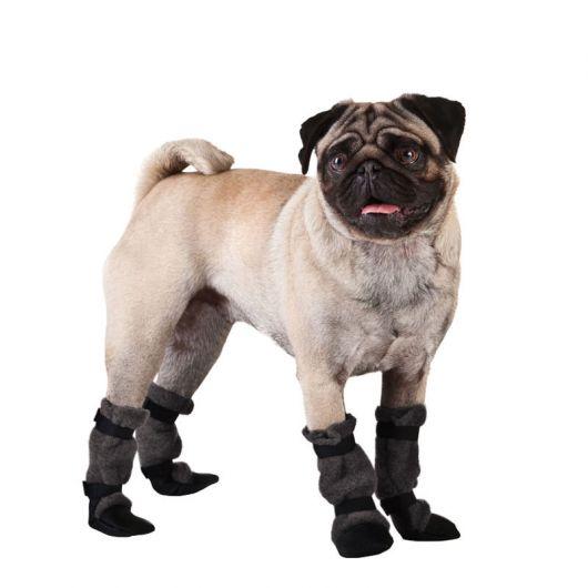 sapatos-para-cachorro-destaque