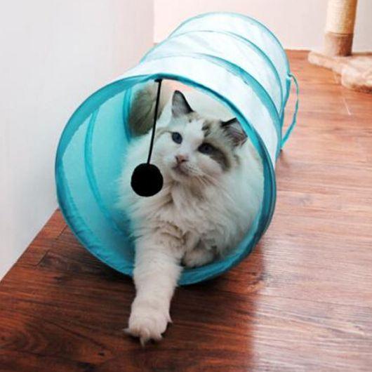 brinquedo gato apartamento