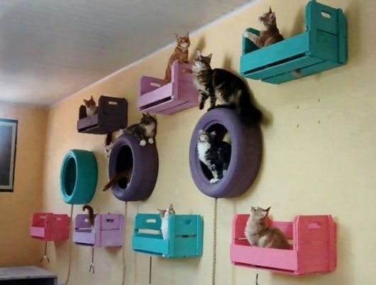 Brinquedos para gatos 52 ideias incr veis e diys com for Cost to build shell of house