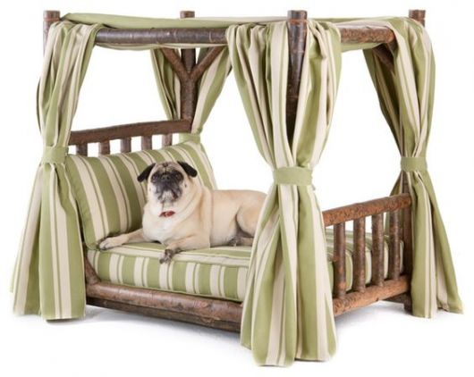 Canopy Beds Dogs