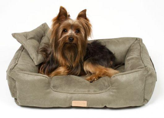 cama cachorro pequeno