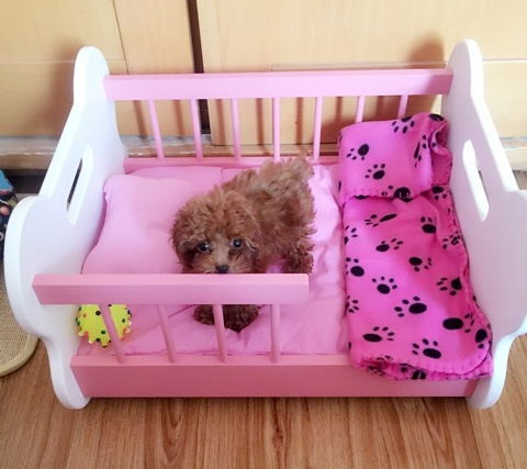 cama com coberta