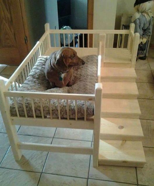 casinha com escada