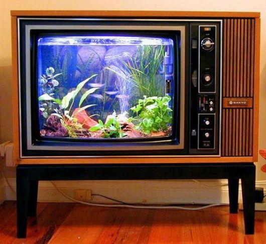 Aquário em televisão antiga