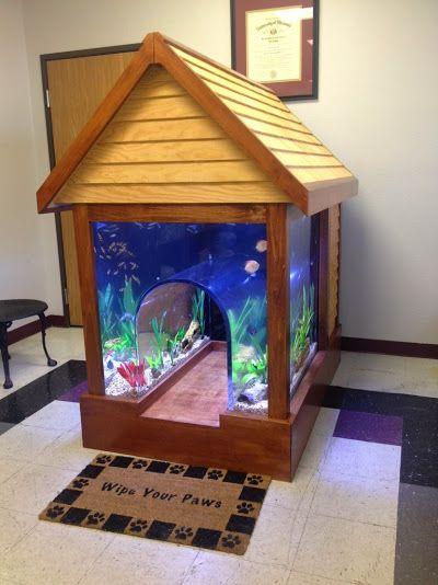 Aquário de peixes transformado em um casinha de cachorro