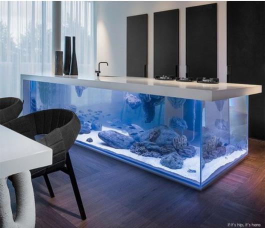Aquário de peixes usado como bancada de cozinha
