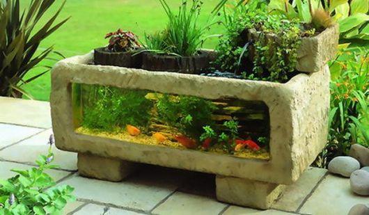 Aquário usado como vaso de jardim