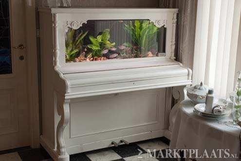 Aquário em piano branco