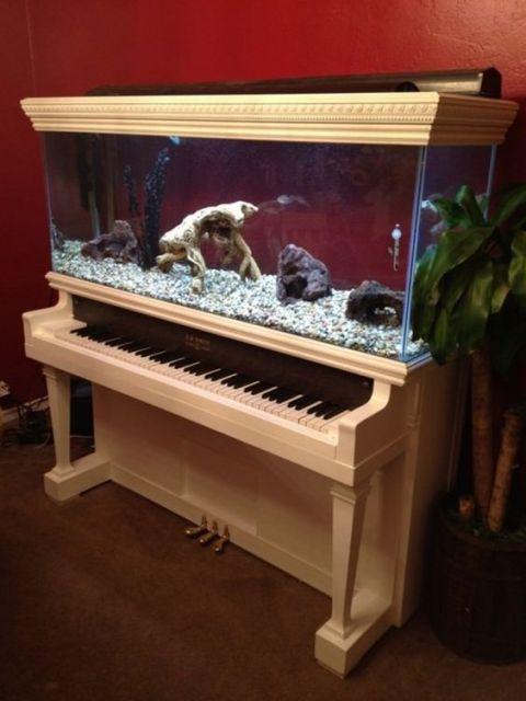 Aquário em piano