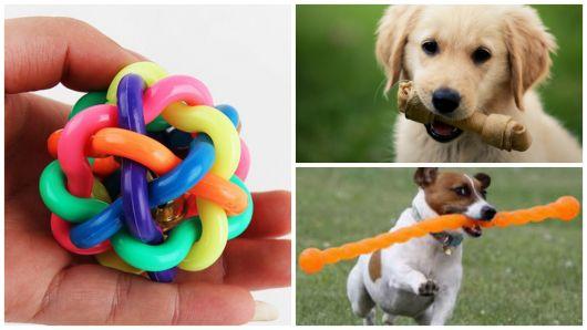 brinquedos para cães pequenos