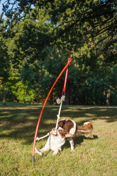 puxador para cachorro