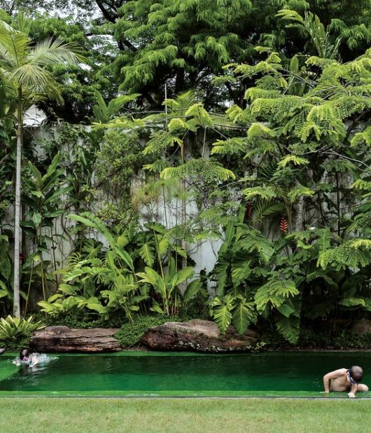 piscina fundo verde