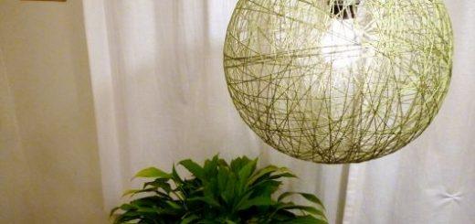 decoração planta