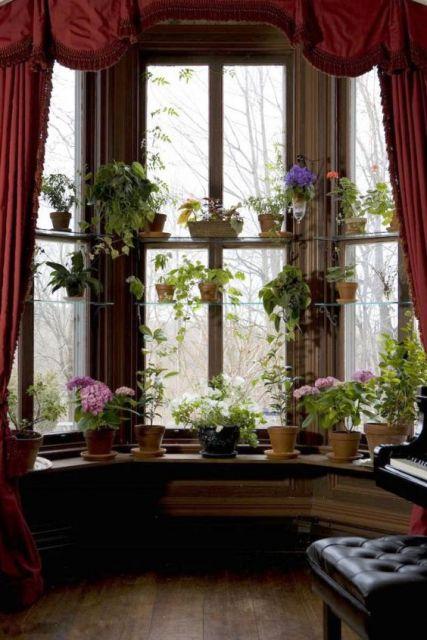 prateleiras com vasinhos em bay window