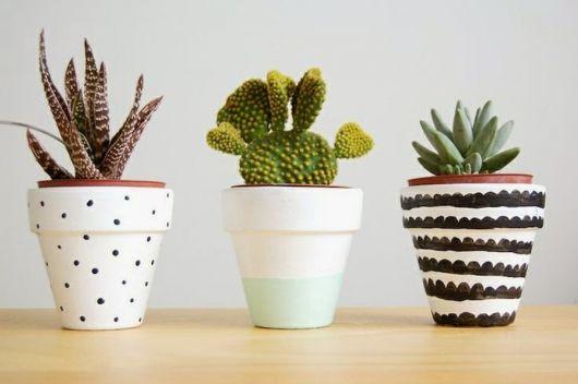 Vasos coloridos com cactos