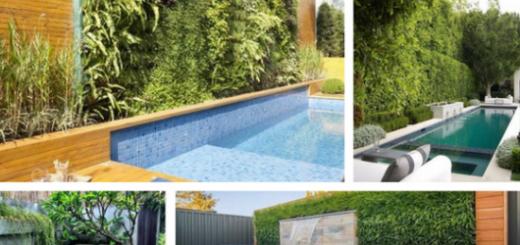 jardim vertical com piscina embaixo