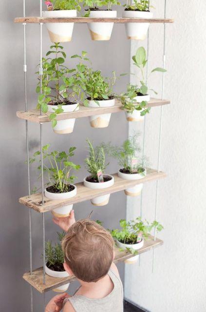 jardim vertical de vasos