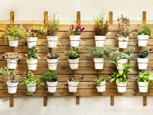 horta caseira com vasos