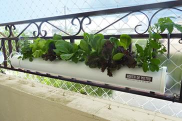 horta hidropônica
