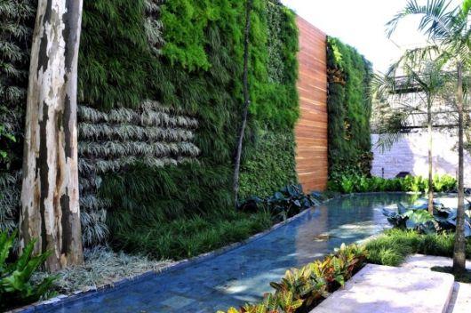 espelho d'água com jardim vertical