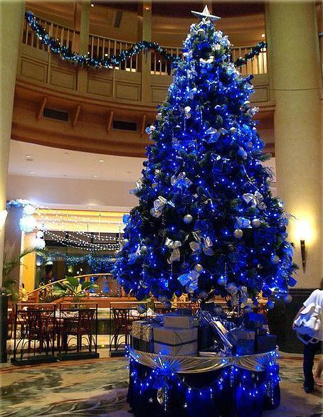árvore de natal azul fotografada de baixo para cima com uma estrela prata eu seu topo