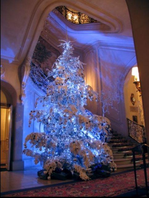 árvore de natal azul muito grande próxima a uma escada enfeitada com neve sobre suas folhas