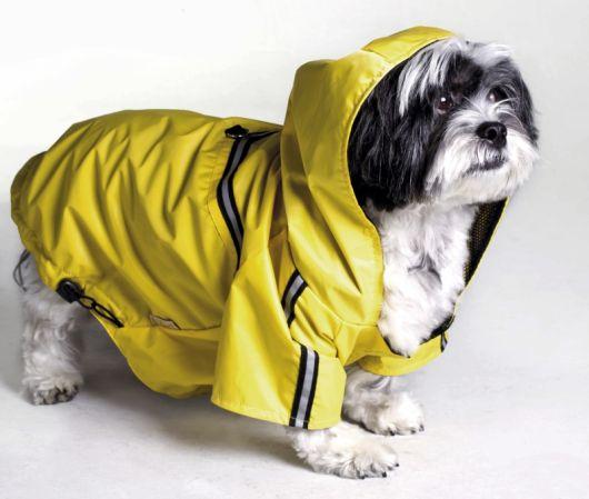 Cachorro pequeno vestindo uma capa de chuva amarela