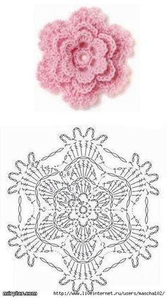 gráfico rosa