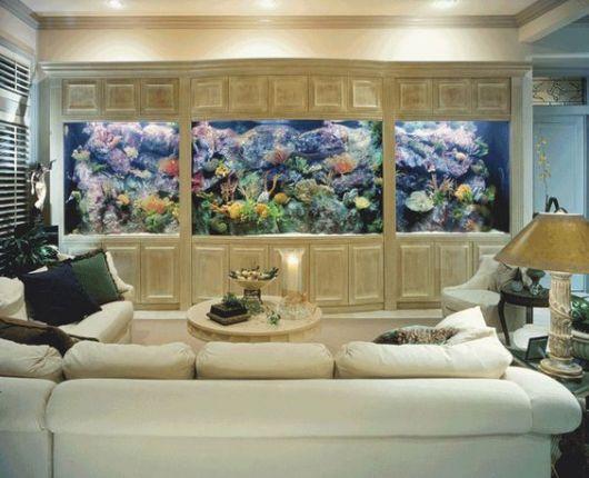 Aquário instalado em toda a extensão de uma parede com muitos peixes e plantas dentro dele