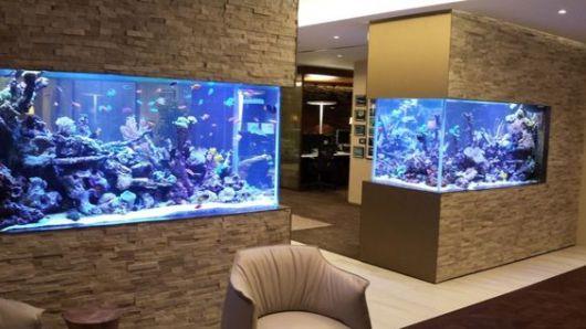 Duas paredes que ficam uma de frente para a outra com aquários diferentes instalados nelas.