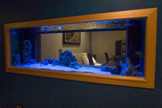 Aquário de parede simples decorado com uma iluminação azul