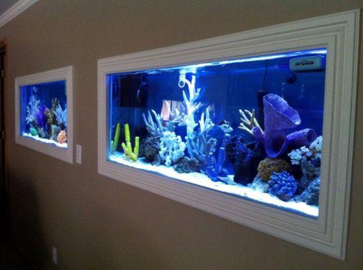 Dois aquários instalados na mesma parede, ambos tem muitas plantas e iluminação azul