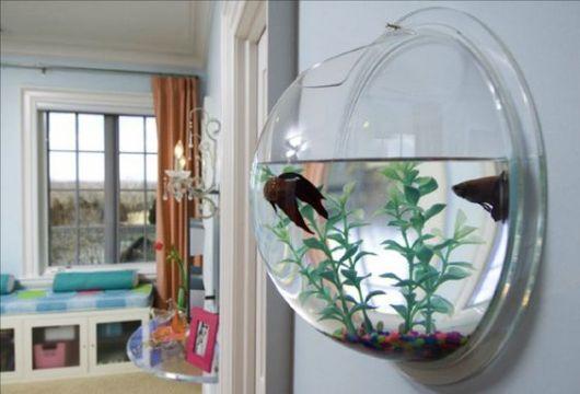 Aquário de parede redondo com um peixe beta nadando dentro dele