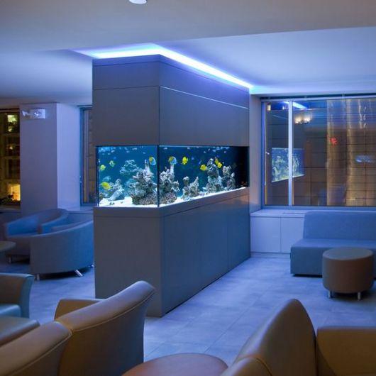 Aquário de parede com iluminação azul que sai dele e do topo da parede